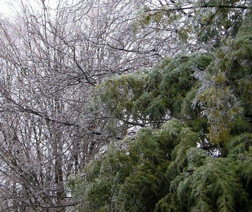 Ice Storm2
