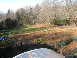 Main Garden in November