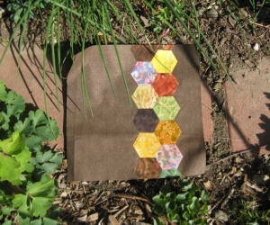 Hexagon applique